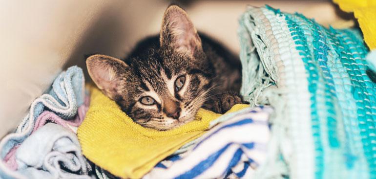 laundry-tips